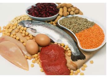 Diete dimagranti iperproteiche sono da sconsigliare: I chili persi sono uguali ai regimi dietetici con carboidrati, ma i rischi molti di più