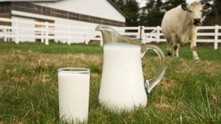 Latte: origine obbligatoria in etichetta per latte e formaggi in Italia