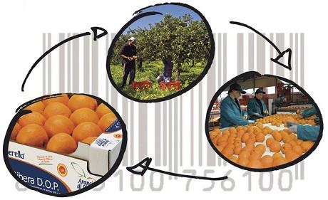 Richiamo alimenti: Procedure trasparenti per gli alimenti