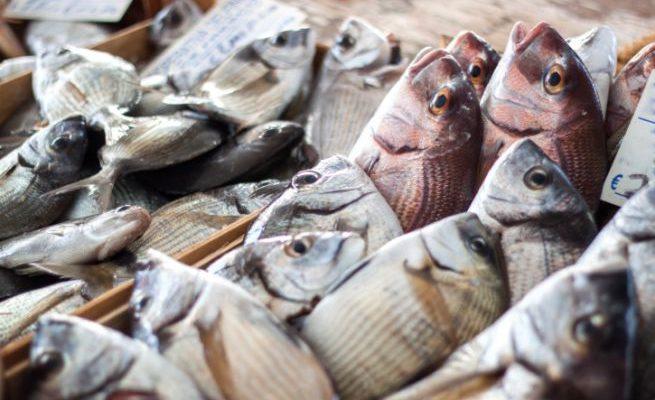 Istamina e pesce
